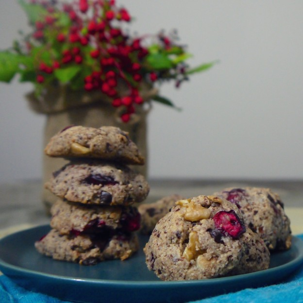 Cranberry Chocolate Chip Cookies (Paleo, Egg-free)