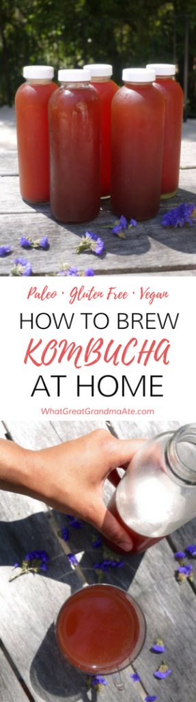 Paleo Gluten Free Vegan How to Brew Kombucha At Home