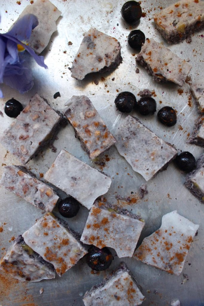 Blueberry Walnut Coconut Bombs