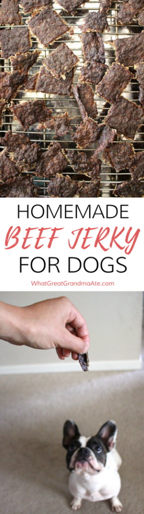 Paleo Homemade Dog Treat Beef Jerky