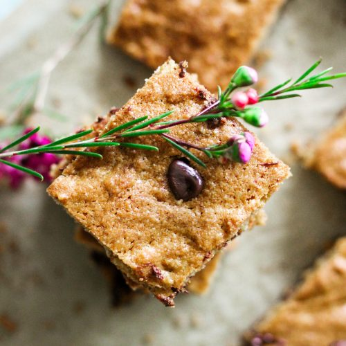 Paleo Sheet Pan Chocolate Chip Blondies